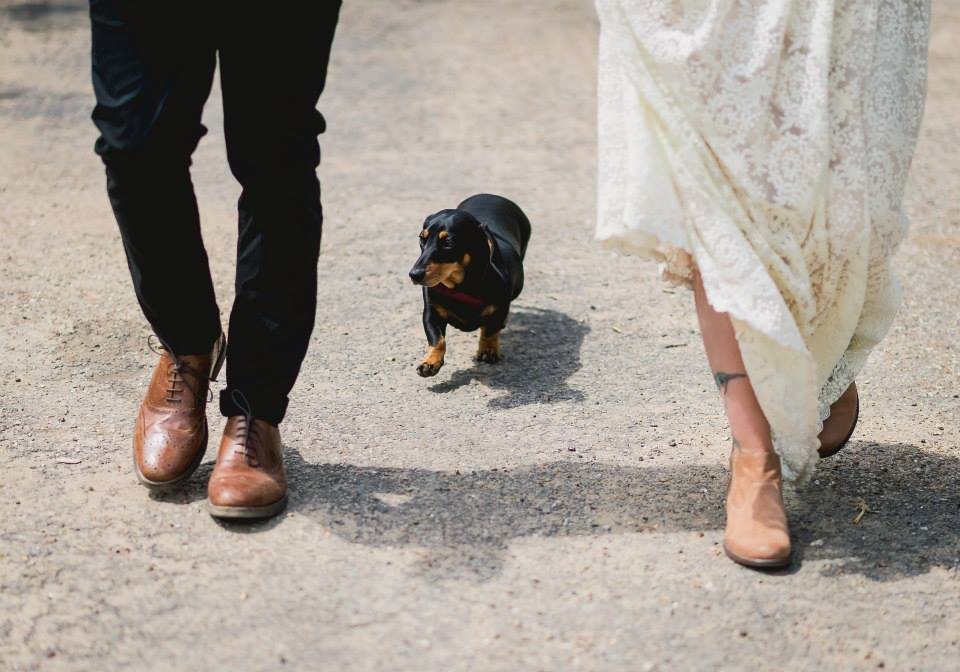 poppy-and-paul-with-their-dog-wedding-day