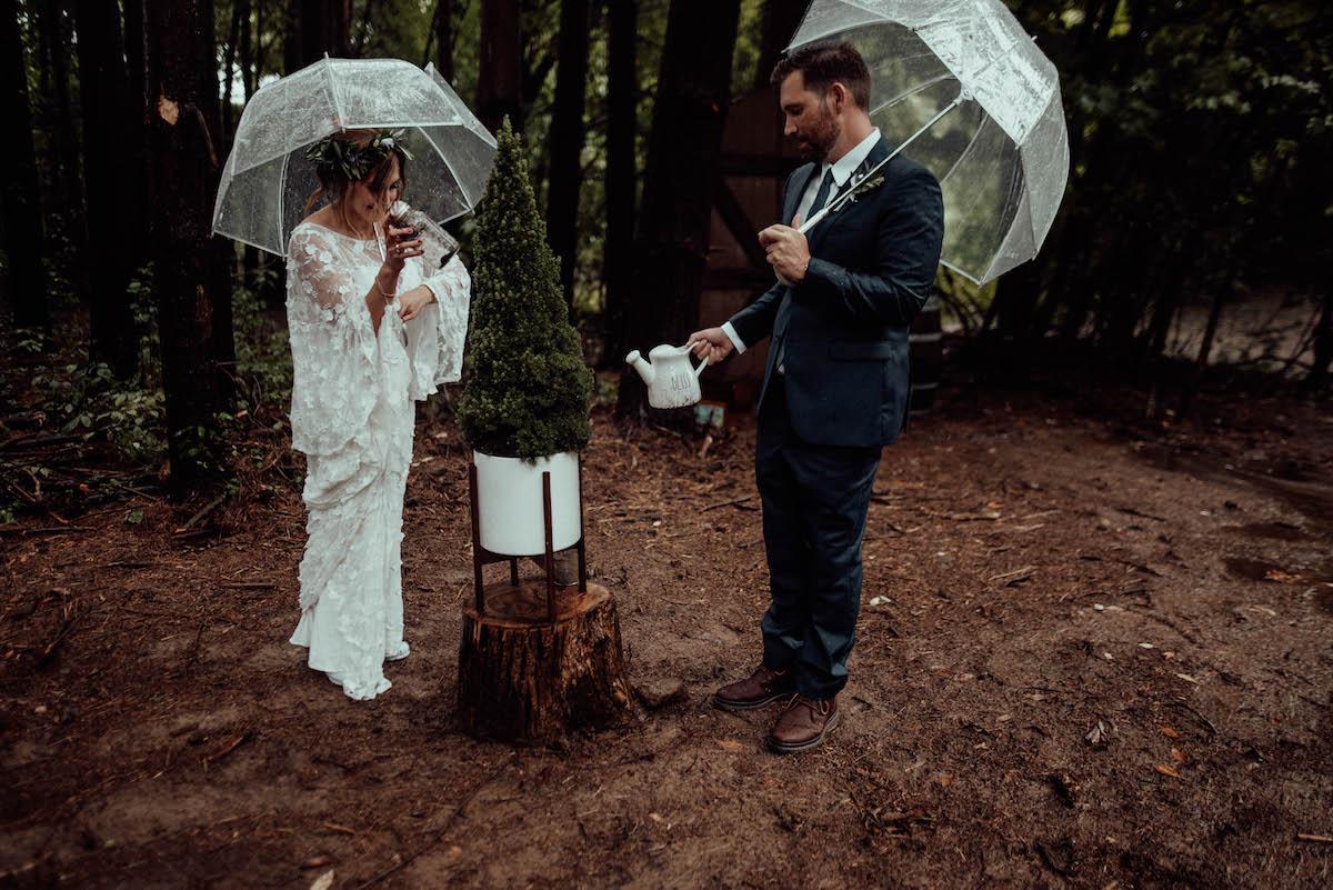 bride and groom plants a unity tree